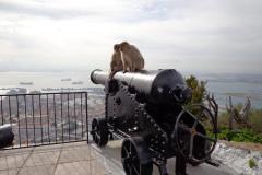 Angielska-armata-baterii-OHara-na-skalach-Gibraltaru